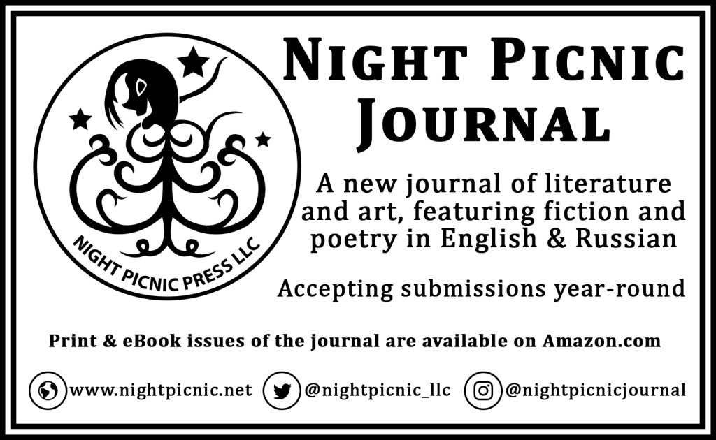 night picnic journal
